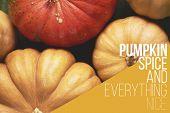 A Lot Of Pumpkin. Top View poster