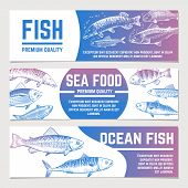 Fish Banners. River And Ocean Sketch Fishes Seafood Packaging Vector Labels. Poster And Banner Packa poster