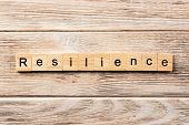 Resilience Word Written On Wood Block. Resilience Text On Table, Concept. poster