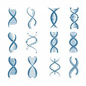 Dna Icons. Genetic Biology Human Structure Medical Scientific Representatives Vector Symbols Isolate poster