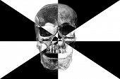 Halloween Skull Art. Black and White Skull. Human Skull Art. Photo Illustration.  poster