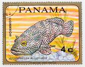 PANAMA - CIRCA 1978: A stamp printed in Panama shows tropical reef fish Epinephelus Elongatus, circa 1978