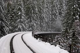 picture of trussle  - Northern Pacific Rail Bridge near Steven - JPG