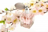 stock photo of perfume bottles  - Perfume pink bottle with cherry blossoms isolate against a white background - JPG