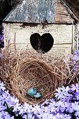 foto of broken heart flower  - Broken blue egg lying in a nest in front of an old rustic bird house. ** Note: Shallow depth of field - JPG