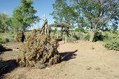 Wikiup - Kaibab Paiute Dwelling