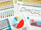 Printed Business Reports In Colors