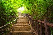 stock photo of stepping stones  - Stairway to forest Erawan national parkKanchanburi Thailand - JPG