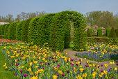Keukenhof garden at sunny day , Netherlands