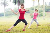 picture of tai-chi  - Asian girls practicing tai chi in the outdoor park - JPG