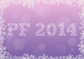 Pink Pf 2014 Snowflake Style
