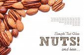 pic of pecan nut  - Background texture of assorted mixed nuts including cashew nuts - JPG