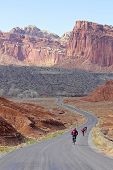 Bicyclists In National Park