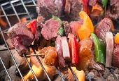 pic of braai  - Tasty skewers on the grill - JPG