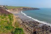 Porthcurnick beach Cornwall England UK north of Portscatho on the Roseland peninsula