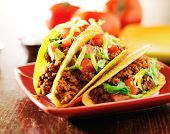 stock photo of tacos  - three beef tacos with cheese - JPG
