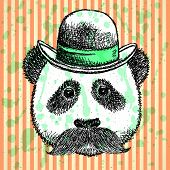 Sketch Panda In Hat With Mustache, Vector  Background