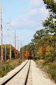 Railroad Track in Fall