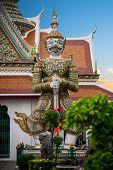 Statue giant at wat arun