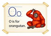 A letter O for orangutan on a white background