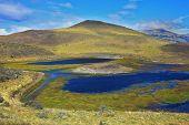 Blue water grassy lake. National Park Torres del Paine. Dreamland Patagonia