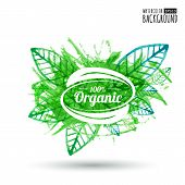 Organic Product Badge On Green Leaf Texture. Watercolor Vector Illustration Background