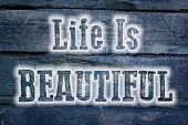 Life Is Beautiful Concept