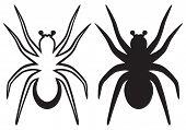 stock photo of creepy crawlies  - Tarantula spider isolated on blue background - JPG