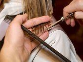 image of hair cutting  - Young girl having a haircut at the hair studio - JPG