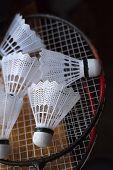 image of shuttlecock  - Plastic shuttlecocks on badminton rackets laying on a windowsill - JPG