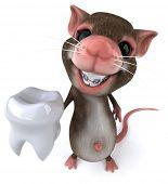 image of gerbil  - Fun mouse - JPG