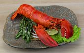 pic of lobster tail  - Boiled lobster served with thyme and rosemary - JPG