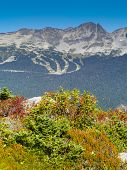 Постер, плакат: Blackcomb Mountain