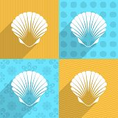 pic of scallops  - White scallop seashell on colorful backgrounds long shadow - JPG