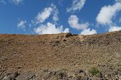 picture of negro  - The volcanic desert of the valley of Pozo Negro on the island Fuerteventura one of the Canary islands belonging to Spain - JPG