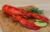foto of lobster tail  - Boiled lobster served with thyme and rosemary - JPG
