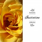 stock photo of romantic  - Invitation card with a yellow rose - JPG
