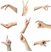 foto of nonverbal  - Collage of  hands showing different gestures - JPG