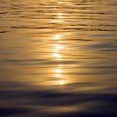 Water goldish reflection.