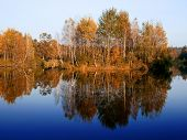 Autumnal trees over mirror-like water.