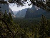 Yosemite Falls at Yosemite National