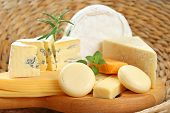 stock photo of gourmet food  - board of delicious cheese  - JPG