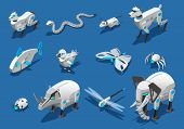Animal Robots Isometric Icons Set With  Pets Companions Automated Birds Dragonflies Insects Spider E poster