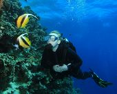 Scuba Diver and Red Sea Bannerfish