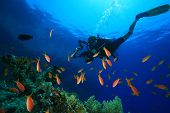 Scuba Diver with underwater camera diving in clear blue tropical sea
