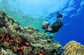 Woman Snorkels over Coral Reef with Tropical Fish