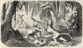 Old illustration of a indigenous hunter in the jungle fighting against wild beast. Original, from a