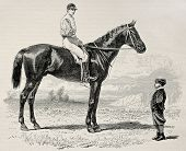 Old illustration of Suzerain, winner of  the Prix du Jockey Club (Derby) in 1868. Created by Janet-L