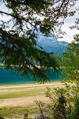 View Through The Forest To Black Lake. Lake In The Forest Park Durmitor. Montenegro. Europe,beautifu poster