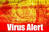 Virus Alert Warning Message